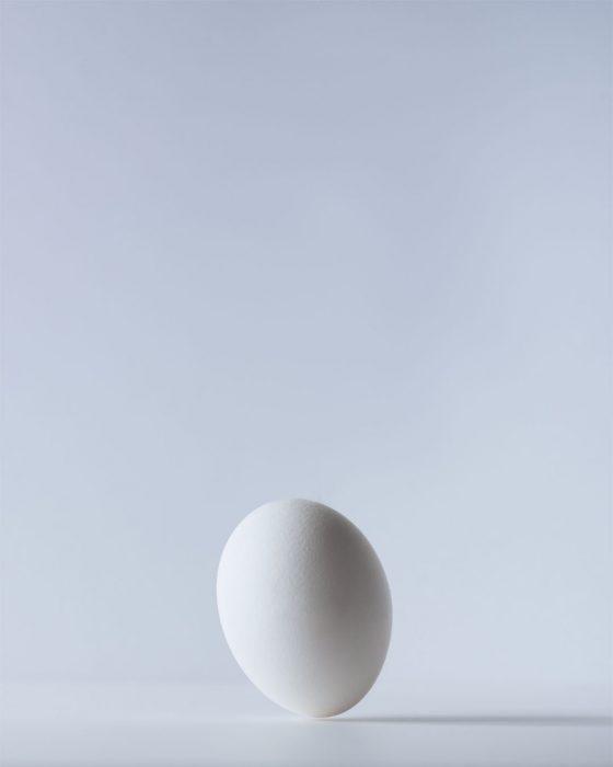 Falling Egg